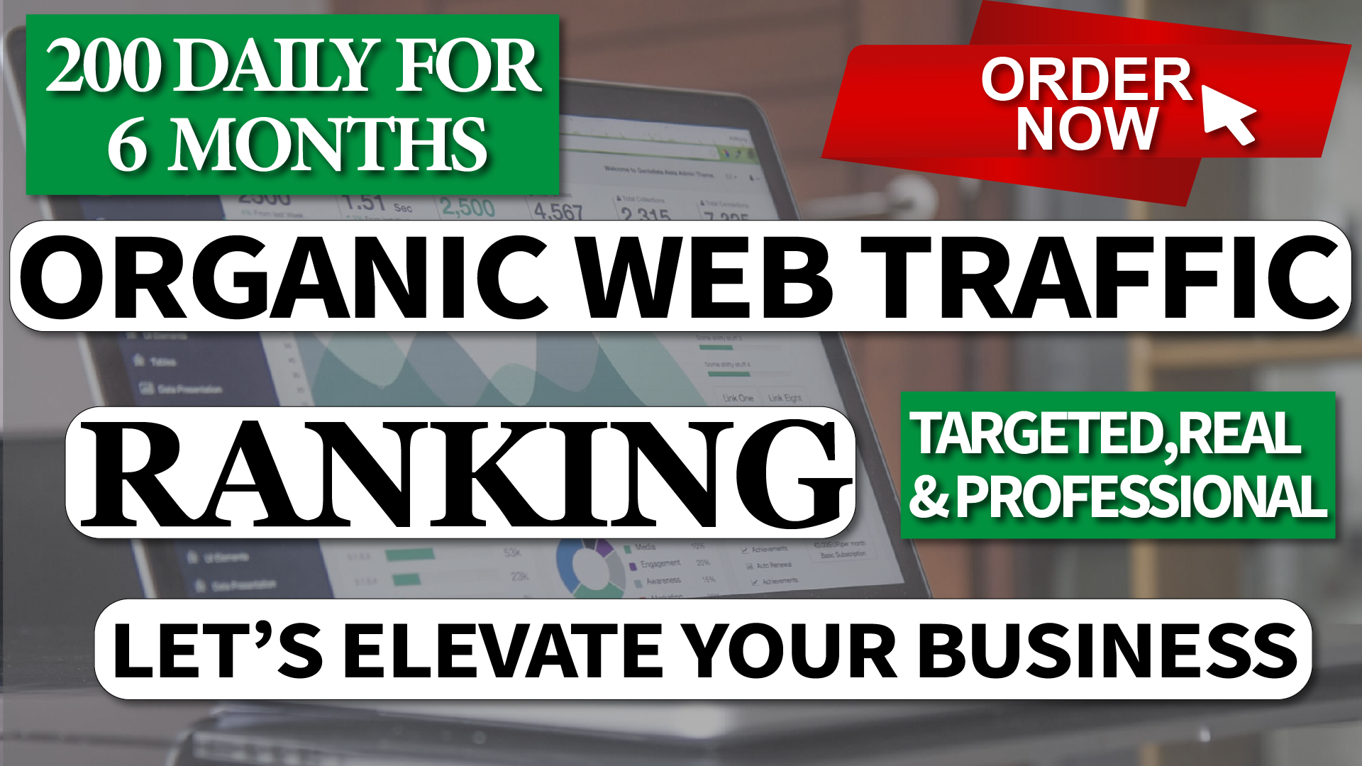 I Will Drive Real Organic Web TRAFFIC for 6 Month