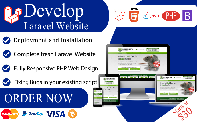 We will be your laravel developer to design and develop php laravel website.