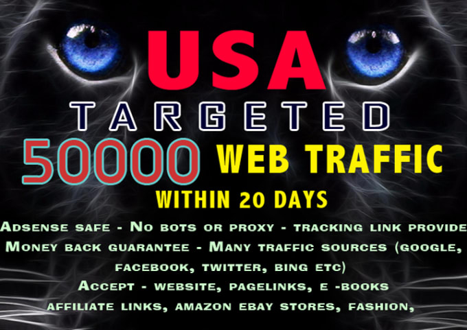 i will drive 50000+ visitors to your website within 20days