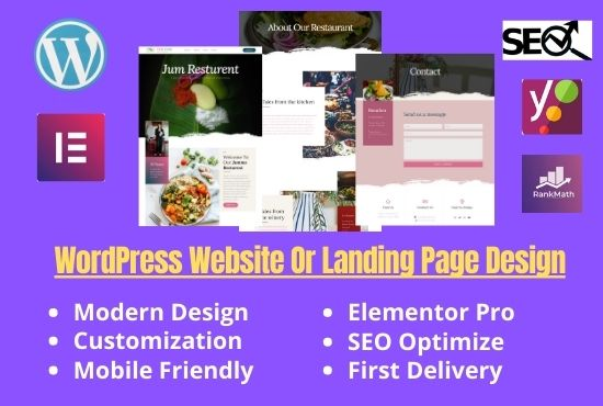 I will design or redesign professional WordPress website or landing page or blog