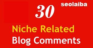 I will do 30 niche nofollow blog comments high da pa