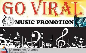 I will do organic,  worldwide,  music promotion, apple music,  audiomack music.
