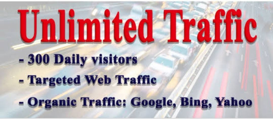 Real Organic Traffic To Visitors Your Website From Worldwide For 30 Days