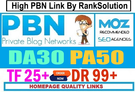 20+ PBN Homepage high 20 pius DR DA PA TF CF MOZ Authority expired space backlinks