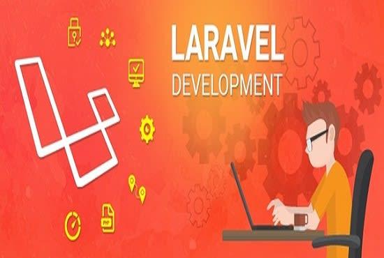 I will developp a website using laravel
