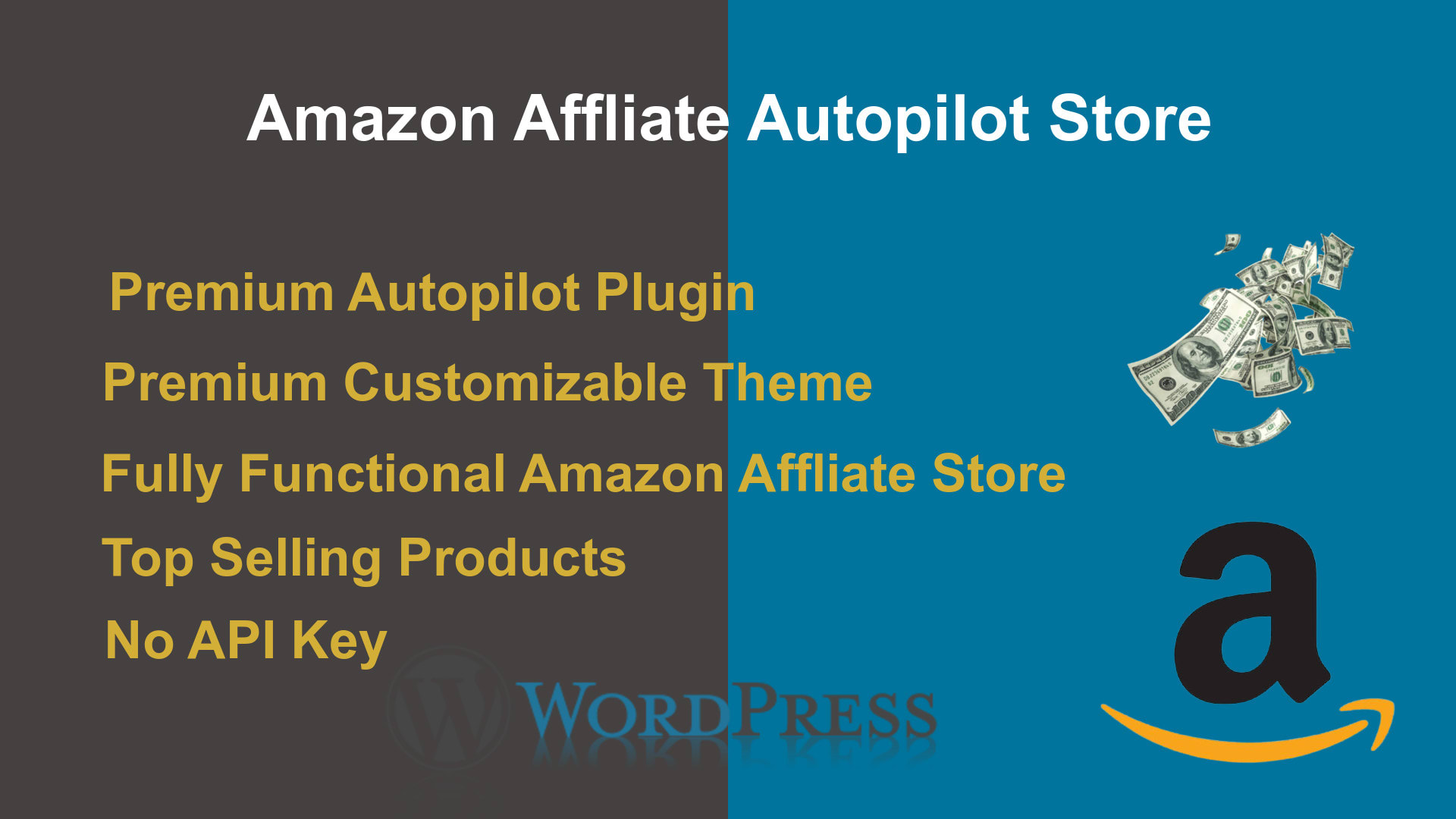 I will build amazon affliate autopilot store