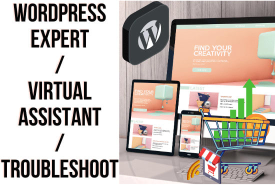 I will be a wordpress expert,  virtual assistant or troubleshoot wordpress website