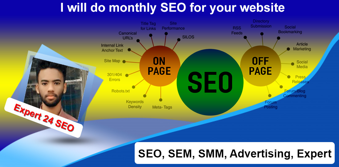 I will do full monthly SEO for your website