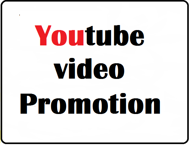 I will do Organic YouTube video promote