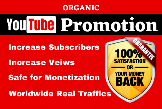 I will do organic Video promotion with SEO to increase real engagements