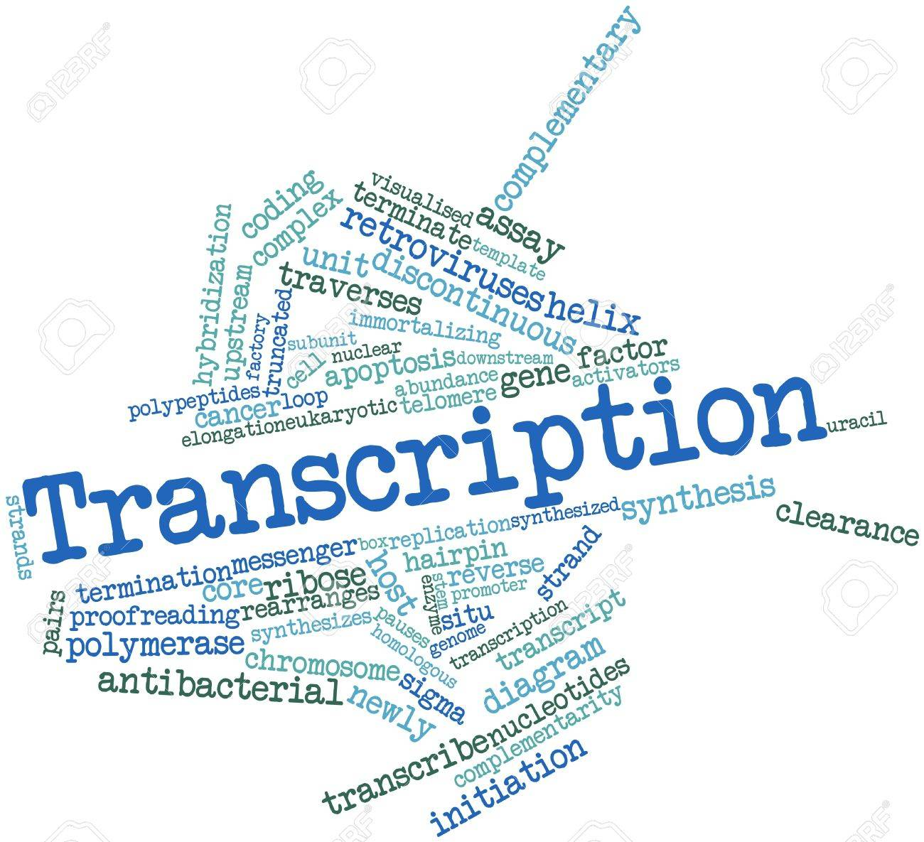 high quality video and audio transcription