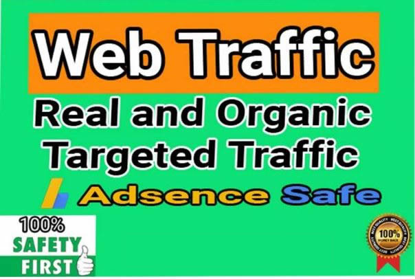 I will provide 150,000+ real or organic and targeted web traffic 4000 to 5000 visitors daily for 30d