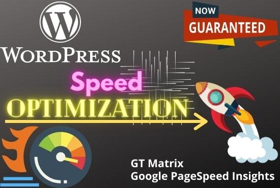 I will do WordPress web speed optimization