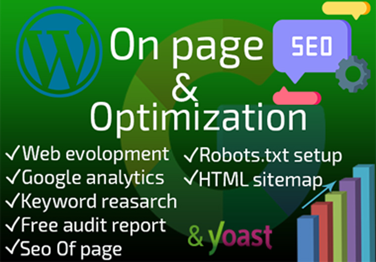onpage SEO service for website ranking