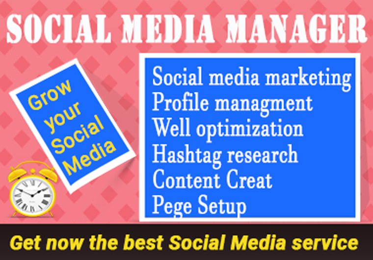 Social media marketing manager and Virtual assistant
