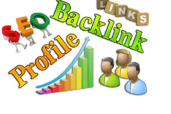 I will create 30 high quality SEO profile backlinks