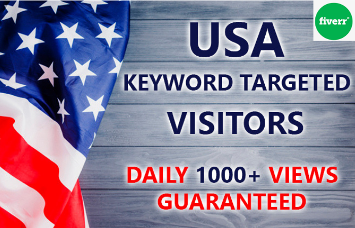 I Will Send Real Targeted Web Traffic Audience