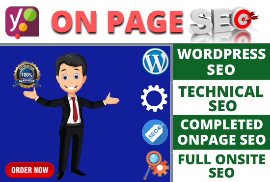 I will do professional onpage SEO and ranking wordpress website