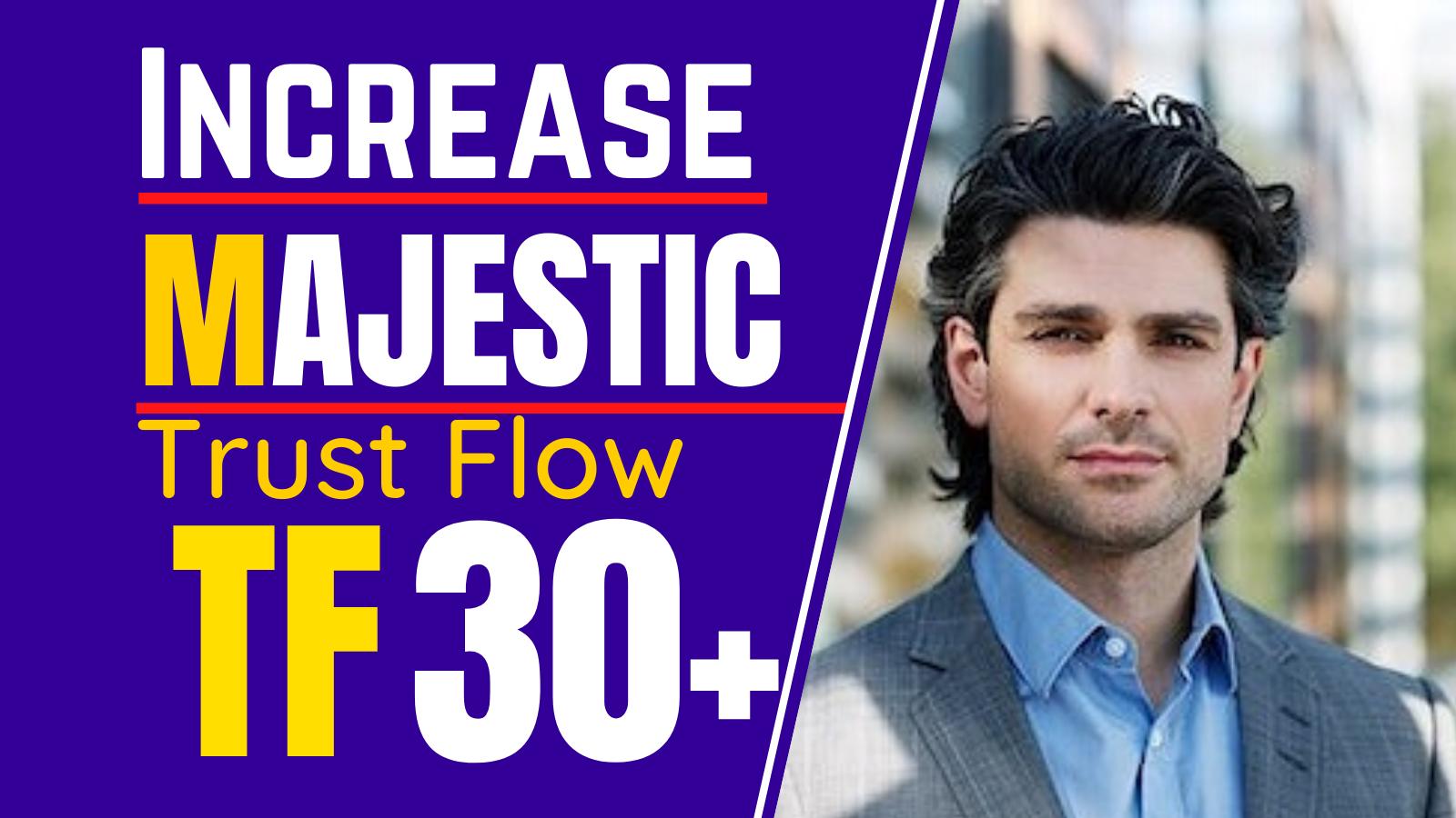 I will increase Trustflow,  Majestic TF 30 plus guaranteed