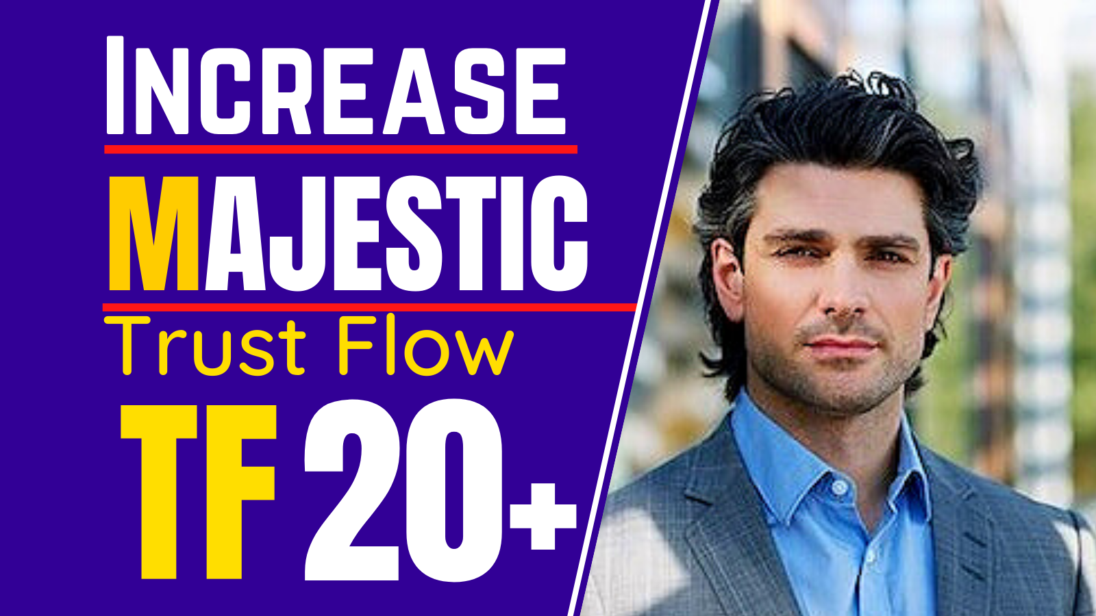 I will increase your majestic trust flow 20 plus,  increase tf