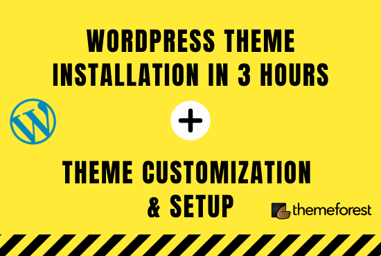 I will do premium wordpress theme installation in 3hrs,  setup demo,  and customize