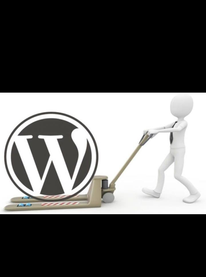 I will backup,  migrate,  transfer WordPress website in 12 hours