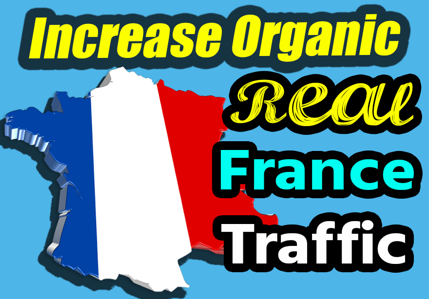 Organic France 1000 real traffic for your website