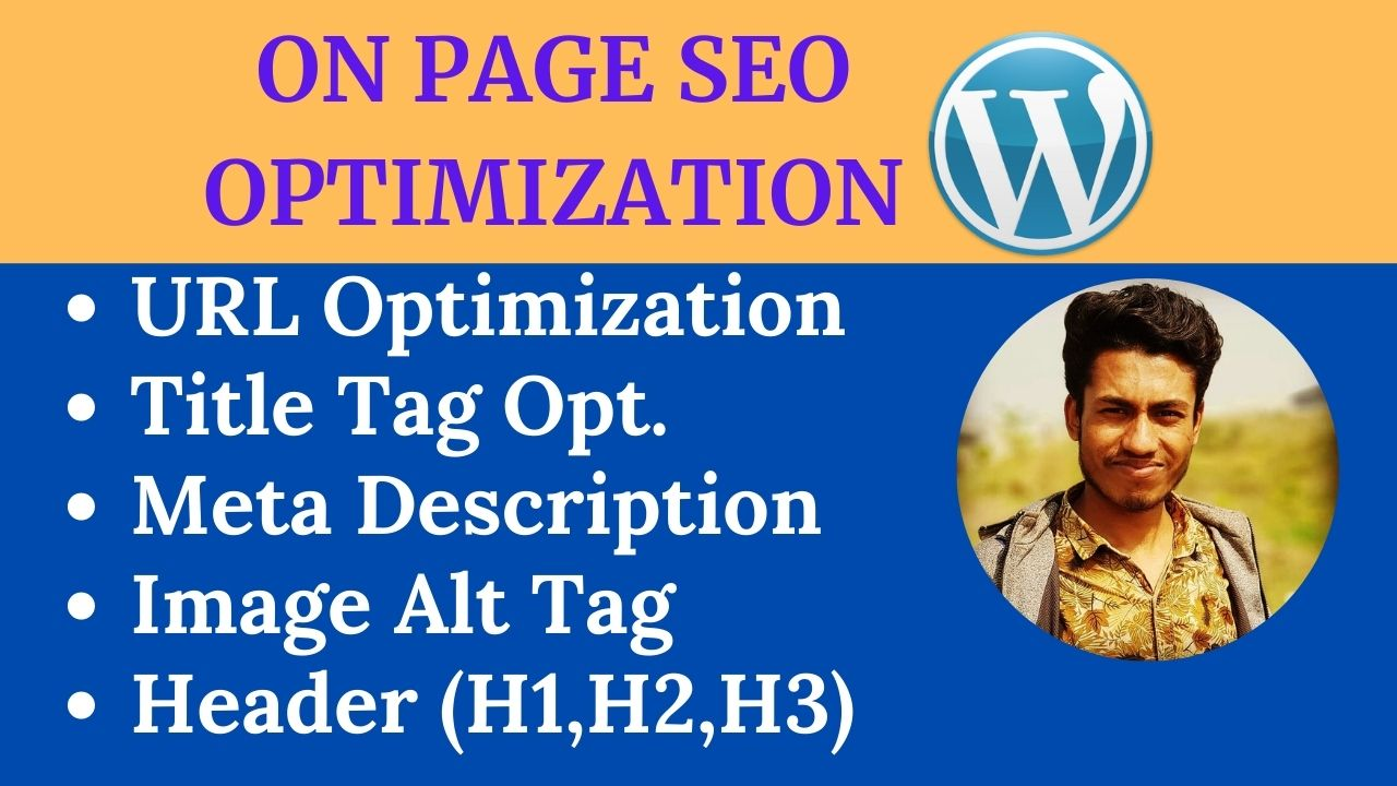 I will do on page SEO optimization for wordpress