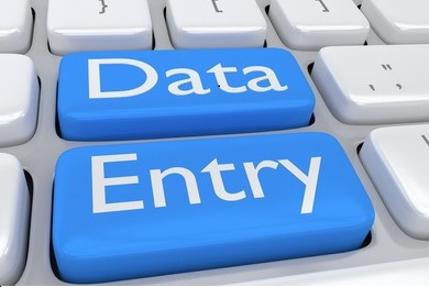 perform excel data entry,  copy-paste,  type,  data entry,  and other administration