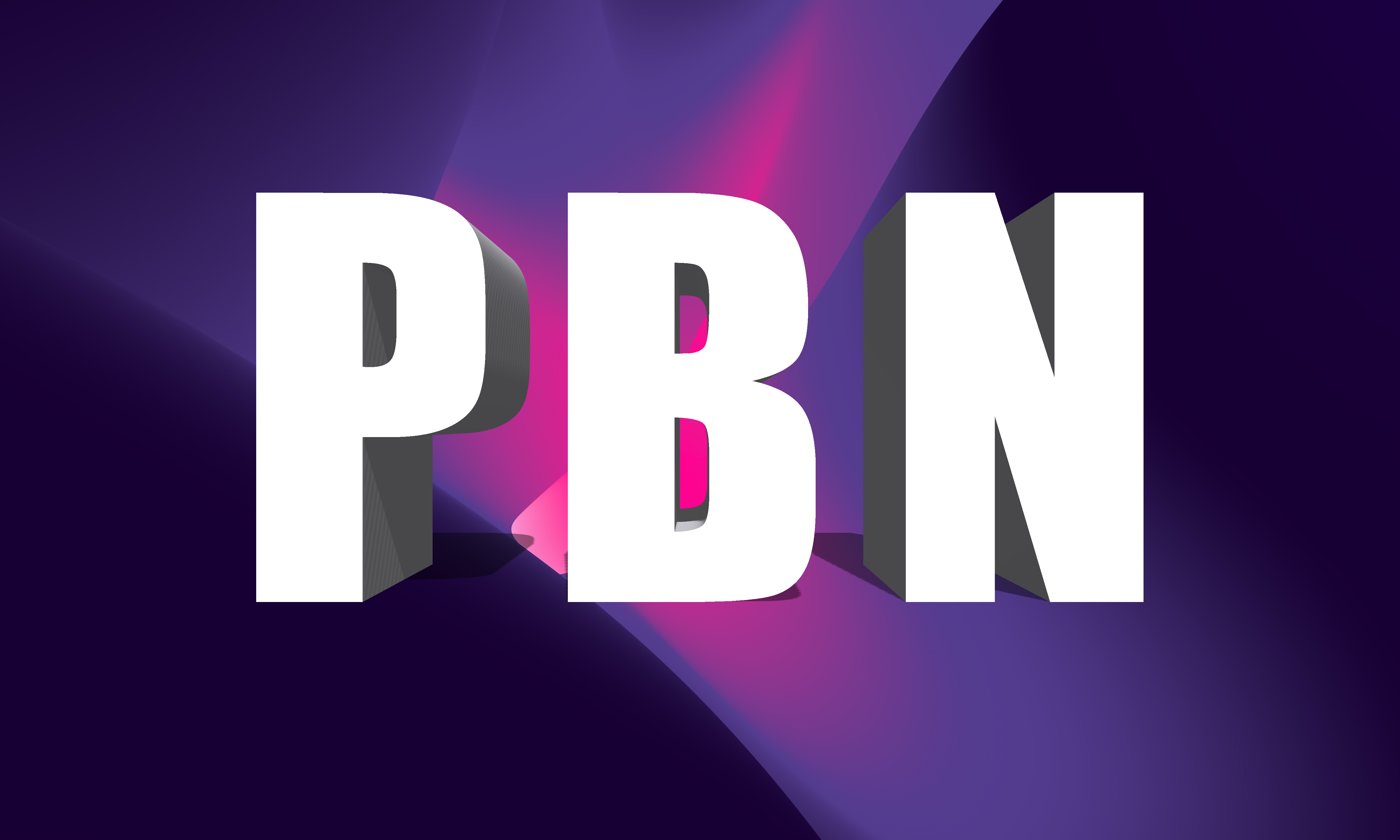 10 High quality DR 60+ do-follow permanent homepage PBN back-links