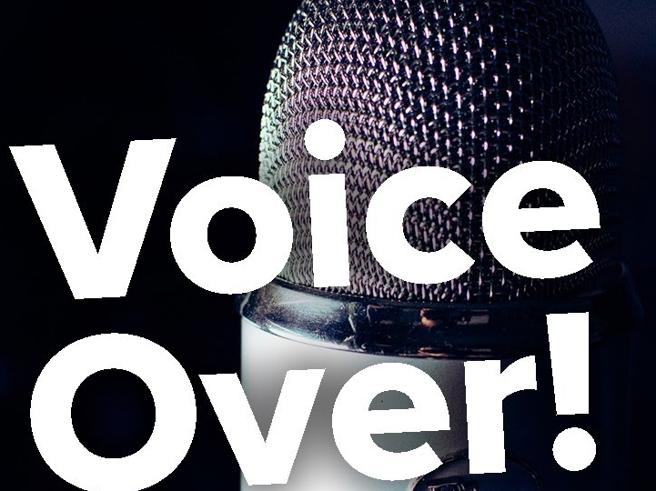 Professional voiceover,  100 words for your project