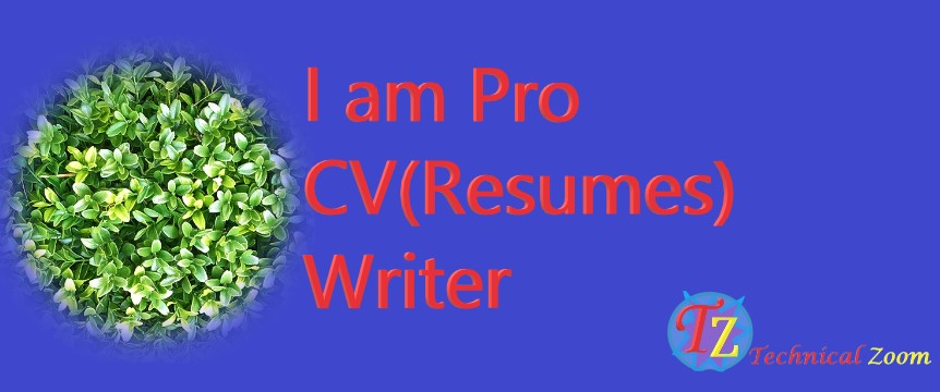 I will provide professional resume writing services