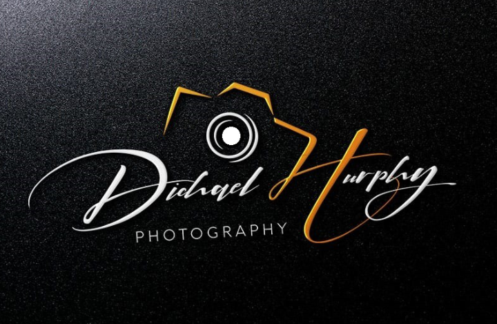 I will design eye catchy signature logo design & handwritten