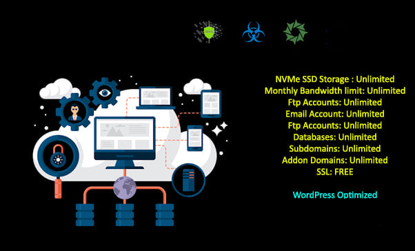 Cpanel NVMe Shared Hosting With Free SSL