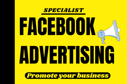 I will do your Facebook ads campaign Manager
