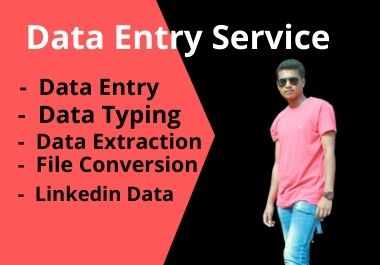 I will do data entry,  copy-paste,  manual data typing,  excel data entry work