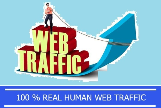 UNLIMITED HUMAN TRAFFIC BY Google Twitter Youtube and many more to web site for 30 days.