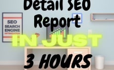 I will Provide Detail SEO Report and also 5 Researched Keyword free