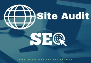 I will audit your on-page WordPress site and send a complete report.