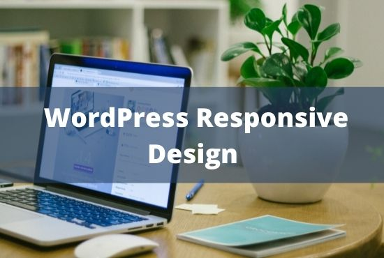 I will design and develop fully responsive seo friendly wordpress website