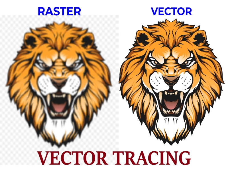 I will do vector tracing,  convert your image or logo to vector