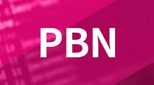 I will create 20 Permanent High DA DR 60+ PBNs Homepage Backlinks