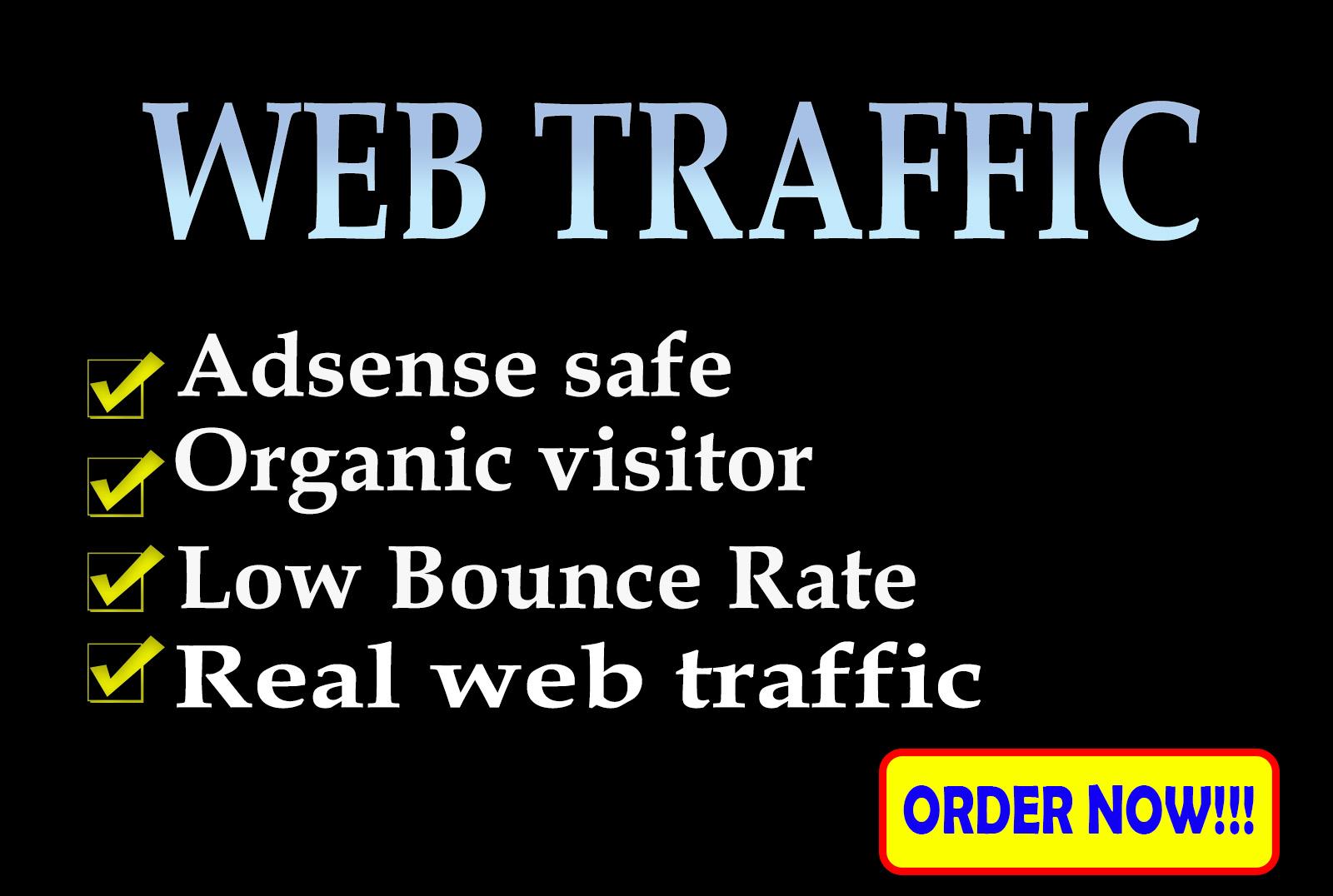 I will bring real organic web traffic