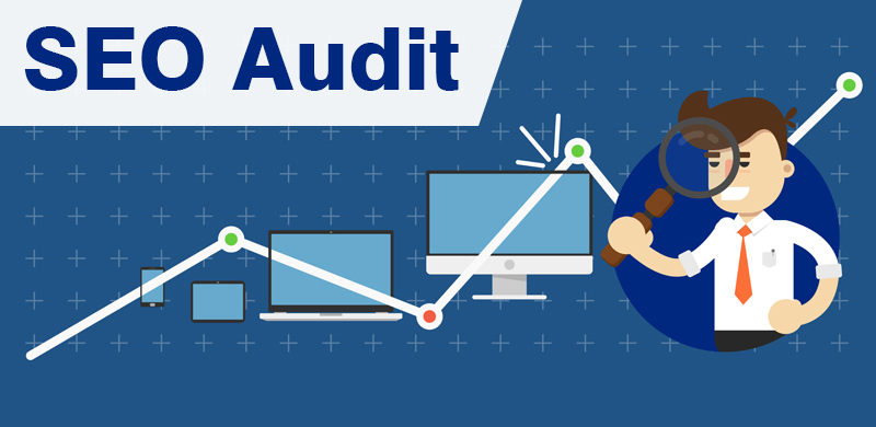 I will give you a professional step by step SEO audit report for your website