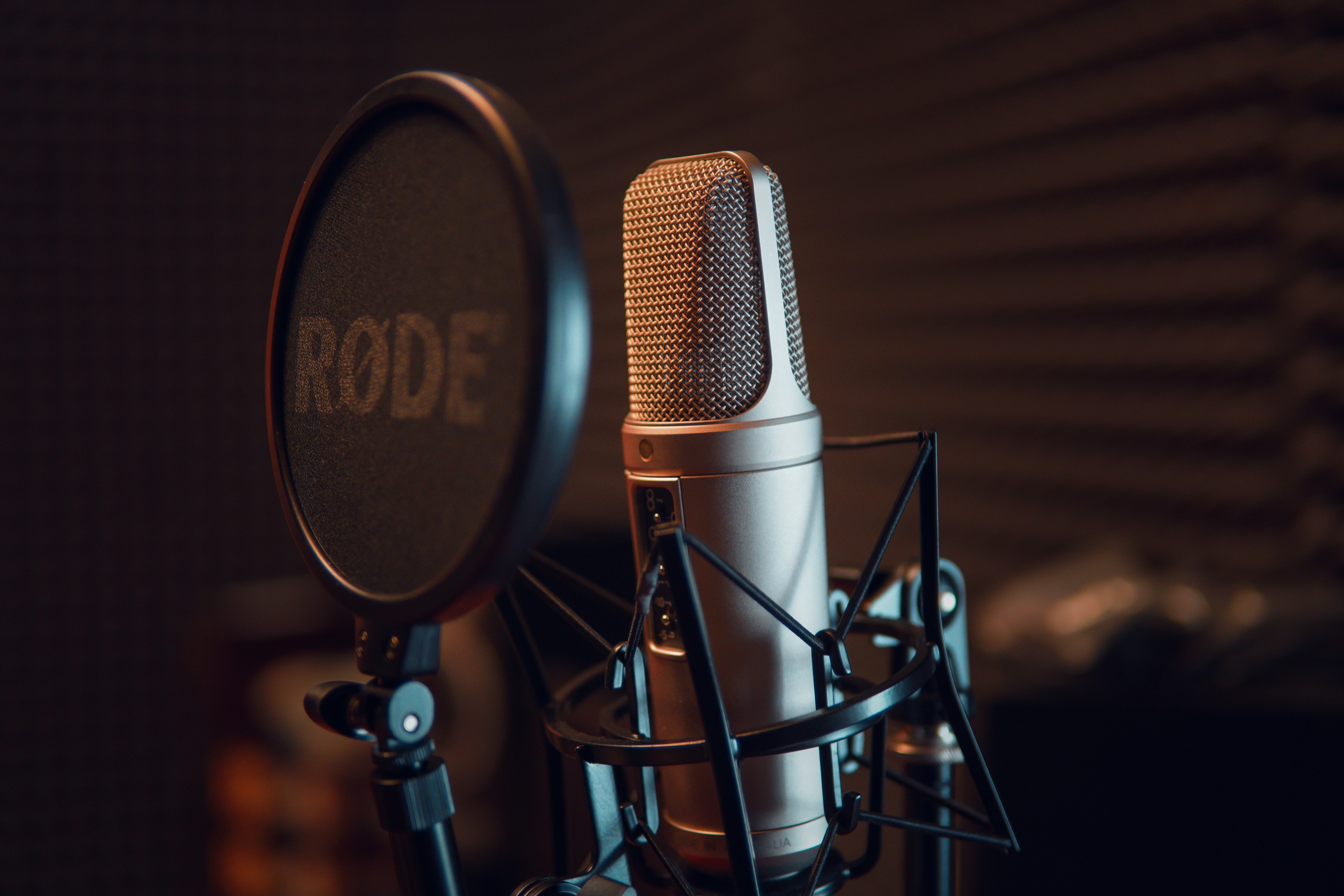 I will record a voice over for you with a nice voice
