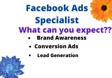 I will set up a Facebook ads campaign and put your ads on top of everyone.