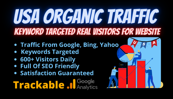 USA organic traffic keyword targeted real visitors for website