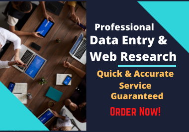 I will do accurate data entry,  web research,  copy-paste job by using Excel and MS Word