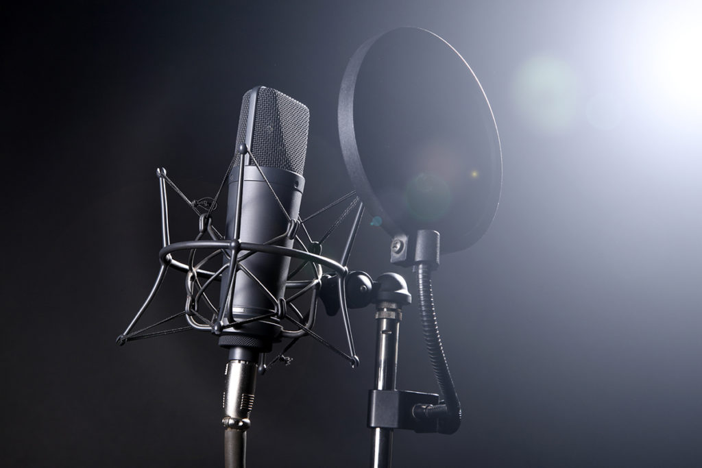 I will make perfect voice overs in any Language for you in just 01 day