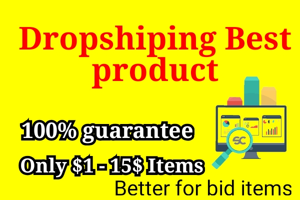 I will give Best Dropshiping bid items